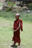 Monk child standing been cool Stock Image