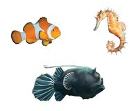 Monk fish, clown fish and sea horse. Isolated realistic illustration on white background Royalty Free Stock Photography