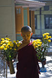 A Monk with flowers Royalty Free Stock Image