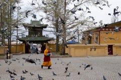 Monk - Mongolia Royalty Free Stock Photo