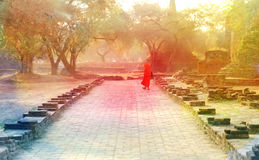 Monk in orange dress goes Royalty Free Stock Image