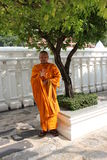 Monk in Orange Robes Beside Tree in Garden. Royalty Free Stock Photography