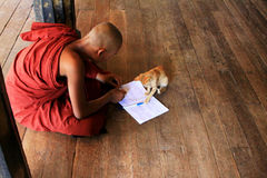 Monk Play With Cat In Shwe Yan Pyay Monastery, Nyaungshwe, Myanmar Stock Photos