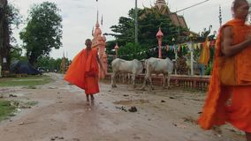 Monk, religion, rain,   cambodia Royalty Free Stock Photo