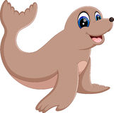 Monk Seal Animal Stock Photography