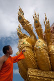 Monk som ser ormkonst. Arkivfoton