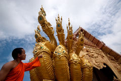 Monk som ser ormkonst. Arkivbild