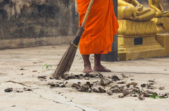 Monk sweeping leaf Royalty Free Stock Images