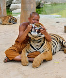 Monk and Tiger Stock Photography