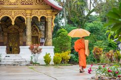 Monk with an umbrella on a city street, Louangphabang, Laos. Copy space for text.