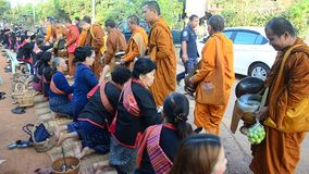 Monk walking on the road for people pray and put food offerings at morning stock video