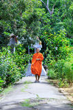 Monk Walking To The Camera Stock Image