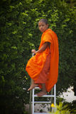 Monk working in the garden Royalty Free Stock Photography