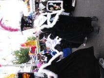 Monkees Royalty Free Stock Photo