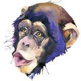 Monkey графики футболки шимпанзе, иллюстрация шимпанзе обезьяны с предпосылкой выплеска текстурированной акварелью вода иллюстрац иллюстрация вектора