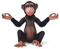 Free Monkey Royalty Free Stock Photos - 10928278