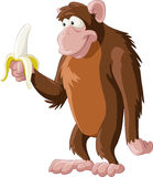 Monkey. Brown monkey with a banana, vector Royalty Free Stock Images