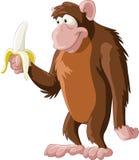 Monkey Royalty Free Stock Images