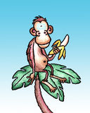Monkey. A monkey relaxes on the frons of a palm tree. Art marker and vellum with digital backdrop stock illustration