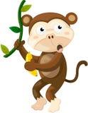 Monkey. Illustration of isolated cute monkey on white Stock Photo