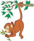 Monkey. Vector clip-art / children's illustration for yours design Stock Photo