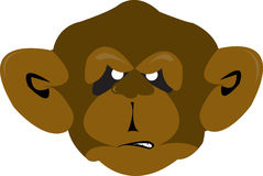 Monkey. Illustration of a mad monkey Stock Image
