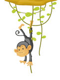 Monkey. An illustration of a monkey caught by his foot Royalty Free Stock Photo