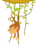 Monkey. An illustration of a monkey caught by his foot Royalty Free Stock Images