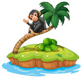 A monkey above the coconut tree Royalty Free Stock Images