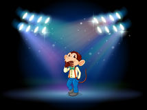 A monkey acting at the stage Stock Images