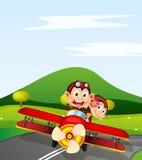 Monkey and aeroplane Royalty Free Stock Image