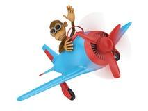 Monkey in airplane Stock Photos