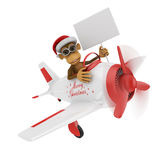 Monkey in airplane Stock Images