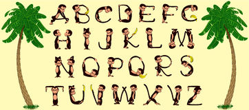 Monkey alphabet. Alphabet of cheerful and merry monkeys - vector illustration Royalty Free Stock Image