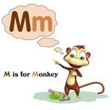 Monkey with alphabet. 3d rendered illustration of Monkey with alphabet Stock Image