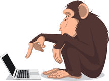 Monkey And Computer Royalty Free Stock Image