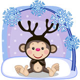 Monkey with antlers Stock Photos