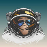 Monkey astronaut illustration Stock Photography