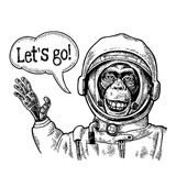 Monkey in astronaut suit smiles and waves his hand. Vintage black engraving royalty free illustration
