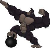 Monkey athlete Stock Images