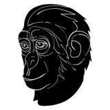Monkey avatar Stock Photos