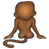 Monkey from the back - Brown Stock Photos