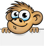 Monkey with background Stock Photo