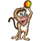 Monkey and ball Stock Photo