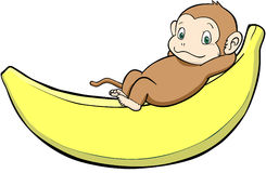 Monkey on the banana. Monkey and banana are drawn in separate layers Royalty Free Stock Photography