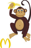 Monkey with banana Royalty Free Stock Photo