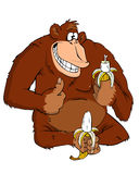 Monkey with a banana. On a white background Royalty Free Stock Photography