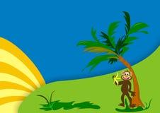 Monkey with banana Royalty Free Stock Photography