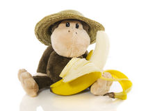 Monkey with banana. Monkey with hat and banana isolated on white background Stock Images