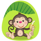 Monkey and banana. Cute Monkey is holding a banana Stock Images